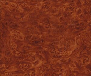 AAI-327-Brown-Carpathian-Elm-Burlwood
