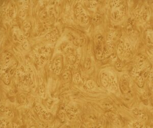 AAI-550_Golden_Carpathian_Elm_Burl